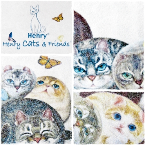 henry cats&friends