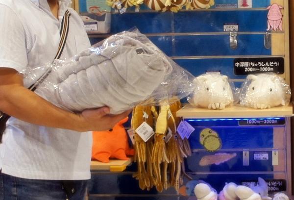 沼津港深海魚水族館 ダイオウグソクムシ