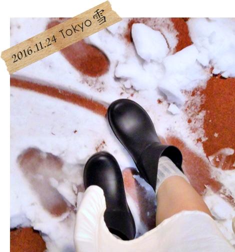東京 11月 初雪 長靴 2016年